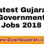 Ojas Maru Gujarat Jobs 2019 | MaruGujarat job 2019 | Ojas Maru Gujarat jobs 1